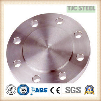 SS310 STAINLESS FLANGE
