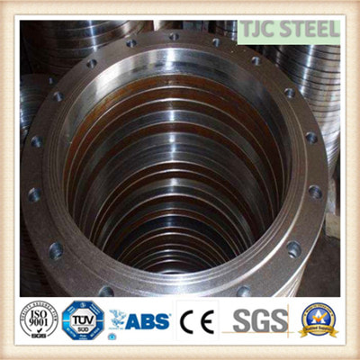 SS321H STAINLESS FLANGE