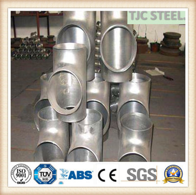 S31254 DUPLEX STAINLESS TEE
